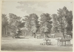 Brockley, Bowling Green f. 183